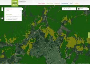 Amazonia, Brasil, en 2013. Crédito: Cortesía de Global Forest Watch