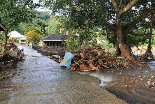 Durante la tempestad de 2013, las inundaciones depositaron grandes cantidades de troncos previamente talados en zonas residenciales y comerciales de San Vicente y Granadinas. Crédito: Kenton X. Chance/IPS