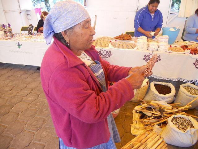 María Solís, una productora de maíz nativo de México, desgrana sus mazorcas de variados colores en un mercado comunitario. La siembra tradicional del cereal se ve amenazada por los intentos por imponer el cultivo transgénico en el país. Crédito: Emilio Godoy/IPS