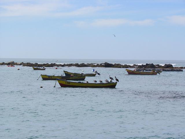 Las barcas sestean en una pequeña bahía de Algarrobo, en Chile, a la espera de que los pescadores artesanales salgan al atardecer colocar sus carnadas mar adentro, para volver al alba del día siguiente a recoger la captura del día, en una actividad de siglos, ahora amenazada por la sobreexplotación y leyes a favor de la pesca industrial. Crédito: Marianela Jarroud/IPS