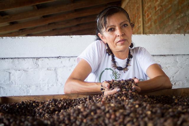 Semillas y plantas ancestrales refuerzan dieta de salvadoreños