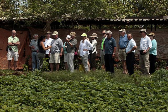 Turistas durante una visita a la Unidad Básica Producción Cooperativa Vivero Alamar, en un área rural al este de La Habana. El agroturismo es un nuevo ingrediente que algunos productores de Cuba están sumando a su actividad para mejorar sus ingresos. Crédito: Jorge Luis Baños/IPS
