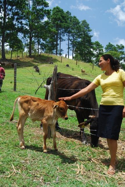 Josefina Rodríguez, parte del 18 por ciento de las productoras agropecuarias de Nicaragua que son propietarias de la parcela que trabajan. El fondo creado hace seis años para impulsar la adquisición de las mujeres rurales de tierra sigue sin tener los recursos requeridos para que sus objetivos se cumplan. Crédito: Ismael López/IPS