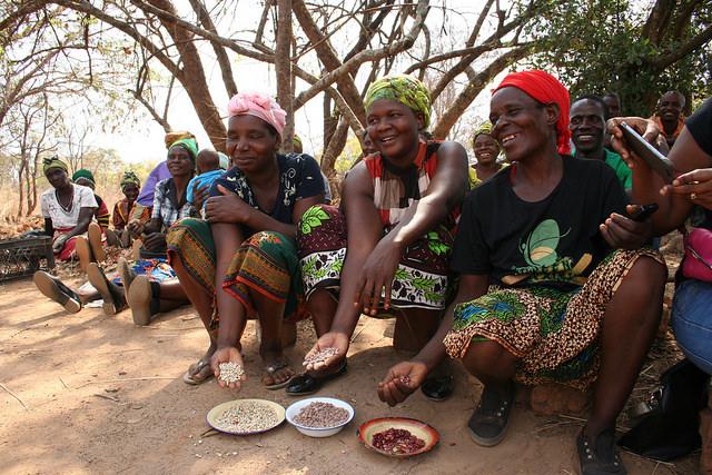 Las legumbres son buenas para la nutrición y los ingresos, en particular para las mujeres agricultoras que velan por la seguridad alimentaria de sus hogares, como sucede en esta aldea próxima a Lusaka, Zambia. Crédito: Busani Bafana / IPS