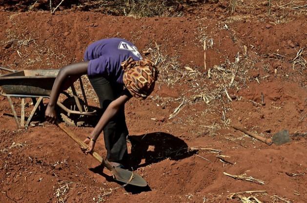 La tierra almacena nutrientes, carbono y microorganismos. Crédito: Xavi Fernández de Castro / IPS