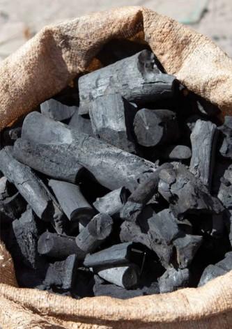 Brasil es el mayor productor de carbón vegetal del mundo. Crédito: FAO