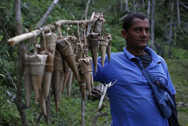 El vendedor Raulises Ramírez, temprano en la mañana, con los típicos cucuruchos de coco que elaboró el día anterior, dispuestos para la venta, en el viaducto de La Farola, que da acceso a la oriental ciudad de Baracoa, en Cuba. Crédito: Jorge Luis Baños/IPS