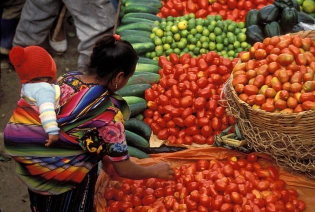 """""""Tomate y tomate da niña, tomate y lima, da niño"""", así explica Bimla Chandrasekharan los cromosomas XY en una comunidad india fuertemente patriarcal. Crédito: Curt Carnemark / World Bank. CC BY-NC-ND 2.0."""
