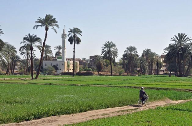 El campo de Egipto al sur de Luxor. En el fondo se ve el pueblo de Al Bayadiyah. Crédito: Marc Ryckaert (MJJR). Licencia de Creative Commons.