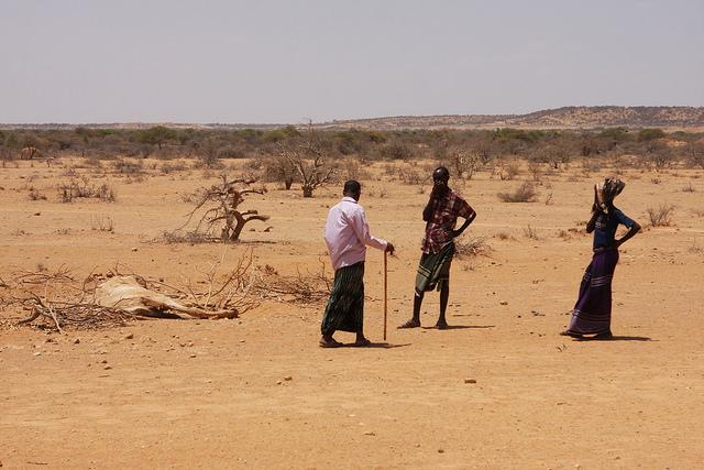 Pastores desplazados inspeccionan un camello muerto a las afueras de un asentamiento para personas desplazadas en la región de Gode. Crédito: James Jeffrey/IPS