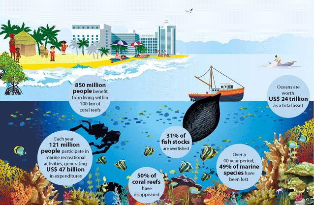 La resistencia antimicrobiana y su relación con el ambiente. Crédito: ONU Medio Ambiente.