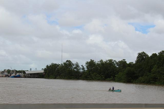 Mangles crecen a los márgenes del río Demerara, que nace en la selva central y recorre 346 kilómetros hacia el norte hasta llegar al océano Atlántico. Crédito: Desmond Brown/IPS