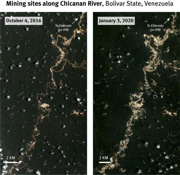 Las imágenes satelitales muestran un aumento considerable de la cantidad de minas y su extensión a lo largo del río Chicanan, en el estado de Bolívar, en el sur de Venezuela, desde 2016. Crédito: Planet Labs