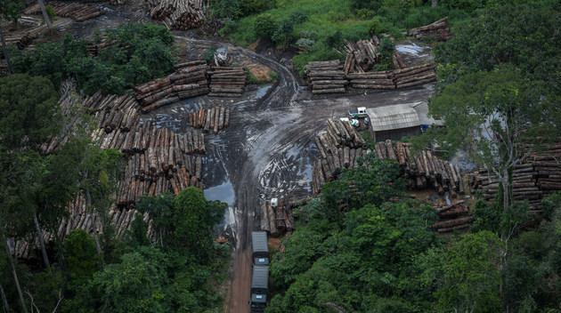 La extracción ilegal de madera es una actividad que debilita los bosques amazónicos en Brasil y prepara la deforestación total para la apropiación ilegal de tierras públicas. La ganadería es implantada de forma extensiva en un intento de legalizar como propiedad privada la tierra que era del Estado. Así se deforestó casi 20 por ciento del bioma amazónico. Investigadores temen que la Amazonia brasileña esté cerca del punto de no retorno, en que la degradación se hace irreversible y ya se expande naturalmente. Foto: Ibama/Fotos Públicas