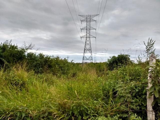 En Calakmul, en el suroriental estado de Campeche, el Tren Maya aprovechará el derecho de vía que la estatal Comisión Federal de Electricidad posee para su tendido eléctrico. Pero en otros tramos forzará el desalojo de personas que viven por donde pasará la nueva línea férrea de México a lo largo de 1400 kilómetros. Foto: Emilio Godoy/IPS
