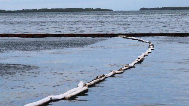 Barreras colocadas por el Ministerio de Ecosocialismo. Foto: Morrocoy Online