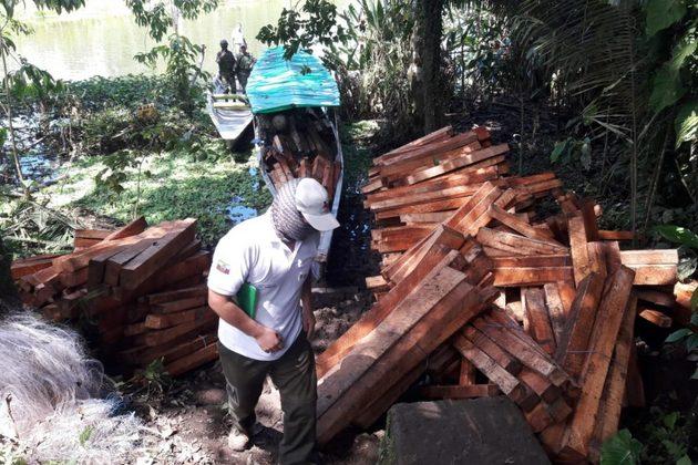 Troncos de balsa extraídos ilegalmente fueron retenidos por la Dirección zonal de Sucumbíos del Ministerio de Ambiente y las Fuerzas Armadas en en el interior de la Reserva Biológica Limoncocha a mediados de julio 2020. Foto: MAE Sucumbíos