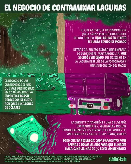 Infografía de ElSurti.com