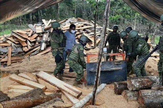 En el sector Shiripuno de la parroquia Inés Arango, cantón Francisco de Orellana (Orellana), el Batallón de Operaciones Especiales Selva N° 54 desmanteló un aserradero ilegal a inicios de julio 2020. Foto: Cortesía