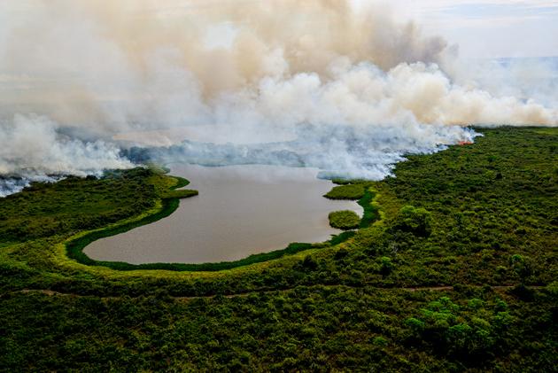 El Pantanal tiene mucha agua, pese a la sequía, pero eso no evitó la multiplicación y propagación de los incendios provocados por la acción humana. La destrucción fue la más extensa sufrida por el mayor humedal del mundo y serán necesarias varias décadas para su recuperación si no se repiten sequías tan graves como la actual. Foto: Mayke Toscano/Secom-Fotos Públicas