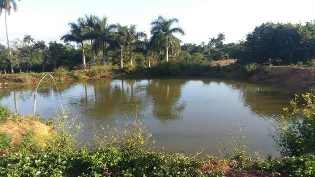 El mayor aljibe excavado en la cubana Finca Marta para el aprovechamiento del agua de lluvia, que forma parte de las soluciones sostenibles desarrolladas para convertir en productivo un terreno en declive, sin agua y poco fértil, en el oeste de Cuba, y que ahora se ha convertido en un modelo para otros productores. Foto: Cortesía de Fernando Funes