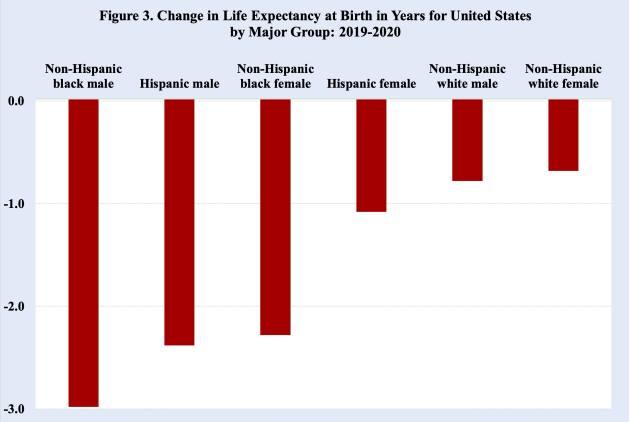 Imagen 3. Cambio en la esperanza de vida al nacer en años para Estados Unidos, por grupos principales. Hombres negros no hispanos- hombres hispanos- mujeres negras no hispanas- mujeres hispanas- hombres blancos no hispanos- mujeres blancas no hispanas Fuente: Centro de Control de Enfermedades de Estados Unidos, febrero de 2021