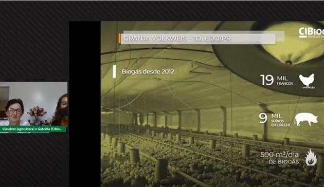 """Captura de la ponencia por videoconferencia de Claudete Volkswey en el Foro Sur Brasileño de Biogás y Biometano, con imágenes del aviario en que cría cerca de 19 000 pollos y pollitos. Ella decidió producir biogás en su finca, con un biodigestor alimentado por """"los excrementos de oro"""" de los cerdos que también se crían en su granja, y abandonó el uso del horno de leña, que obligaba a ella o algún otro miembro de la familia a reabastecerlo para que los pollitos recién nacidos no perecieran en noches en ocasiones con temperaturas bajo cero. Foto: Mario Osava / IPS"""