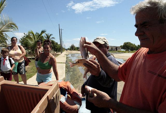 Los pescadores Díaz y Gorrín muestran la exigua captura diaria de biajaibas. Crédito: Jorge Luis Baños/IPS.