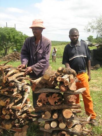 Vendedores de leña. La agricultura itinerante puso en peligro a la selva del distrito de Karonga, en el norte de Malawi. Crédito: Mantoe Phakathi/IPS.