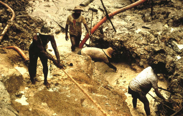 Buscadores de oro ilegales dañan el territorio de los yanomami y atacan a sus familias. Crédito: Cortesía de Colin Jones/Survival