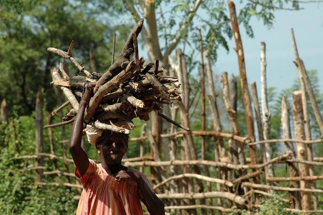 Una mujer carga leña en la zona de Pillumalai, en el oriental distrito de Batticaloa, en Sri Lanka,  golpeado por la sequía. La población sufre una crisis hídrica debido a que el principal reservorio, el tanque Vakaneri, está prácticamente seco. Crédito: Amantha Perera/IPS.