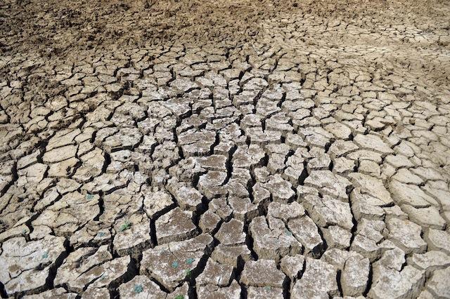 El lecho de un reservorio seco en el sudoriental distrito de Moneragala, en Sri Lanka, donde los  agricultores dicen que la falta de lluvias desde fines de 2013 prácticamente devastó sus tierras cultivables. Crédito: Amantha Perera/IPS.