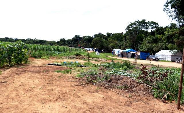 Parte del Campamento Dom Tomás Balduíno, con sus carpas en la ribera del río que atraviesa la Agropecuaria Santa Mônica y los primeros cultivos sembrados en las 400 hectáreas ocupadas por campesinos brasileños sin tierra. Crédito: Cortesía del MST