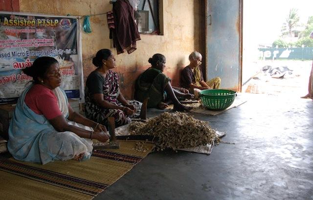 A través de microempresas, las mujeres del pueblo pesquero de Nagapattinam, en el sureño estado indio de Tamil Nadu, logran mantener a su familia a medida que cada vez menos hombres salen a pescar. Crédito: Nachammai Raman/IPS.