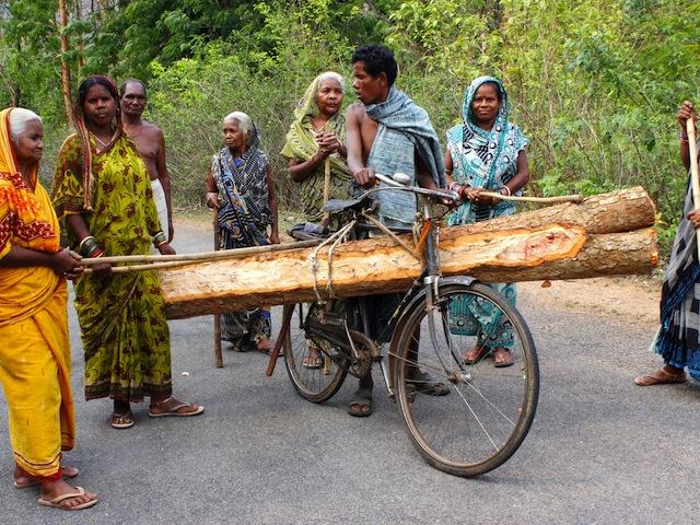 Vigilantes aprehenden a un ladrón de madera. La tala se supervisa con rigor en los bosques de Odisha, y el permiso para retirar troncos solo se concede a las familias que los necesitan para construir viviendas o encender las piras funerarias. Crédito: Manipadma Jena/IPS
