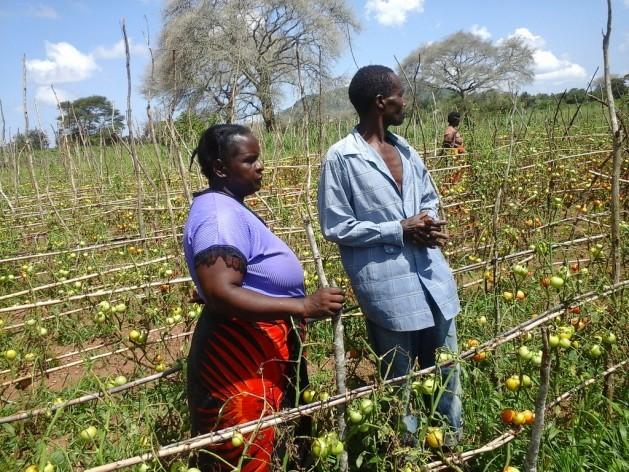 El agricultor de Zambia Neva Hamalengo (a la derecha) sabe lo que significa perder su cosecha como consecuencia del clima. Crédito: Friday Phiri/IPS