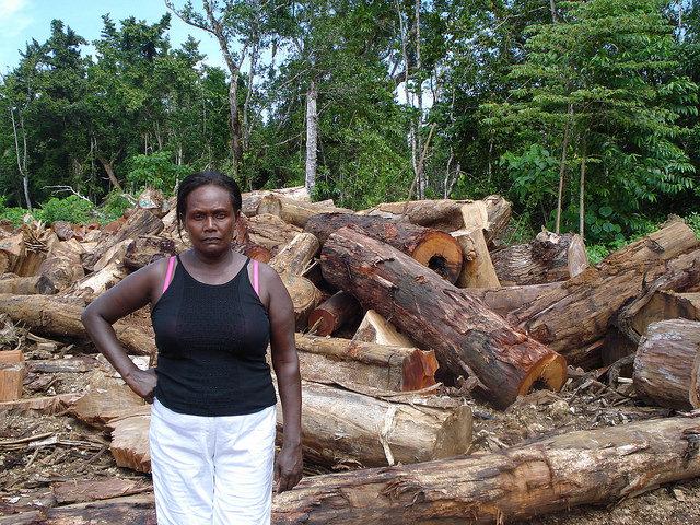 Los propietarios de tierras por derecho consuetudinario en Papúa Nueva Guinea padecen las consecuencias sociales y ambientales de la tala ilegal. Crédito:  Catherine Wilson/IPS.