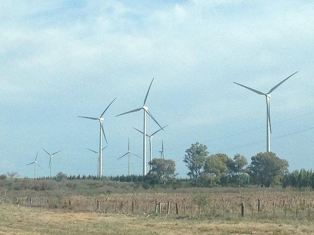 Uruguay posee 16 parques eólicos de mediano y gran potencial, como este del norteño departamento de Tacuarembó. El país cuenta ya una potencia eólica instalada de 670 megavatios y con una cantidad similar en construcción, con lo que 30 por ciento de su demanda eléctrica se abastecerá con la fuerza del viento a fines de 2016. Crédito: Ana Libisch/IPS