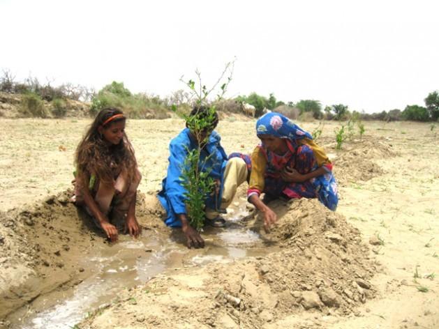 Zainab Samo, su hijo y su hija plantan un limonero en su granja en la aldea de Oan, en el distrito desértico de Tharparkar, en el sudeste de Pakistán. Crédito: Saleem Shaikh / IPS