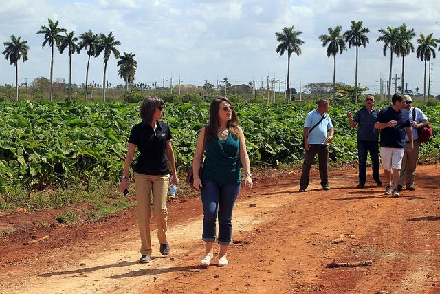 Miembros de la Coalición Agrícola Estadounidense por Cuba, integrada por 30 empresas agroalimentarias, visitan la cooperativa Primero de Mayo, en Güira de Melena, en la occidental provincia cubana de Artemisa. Crédito: Jorge Luis Baños/IPS