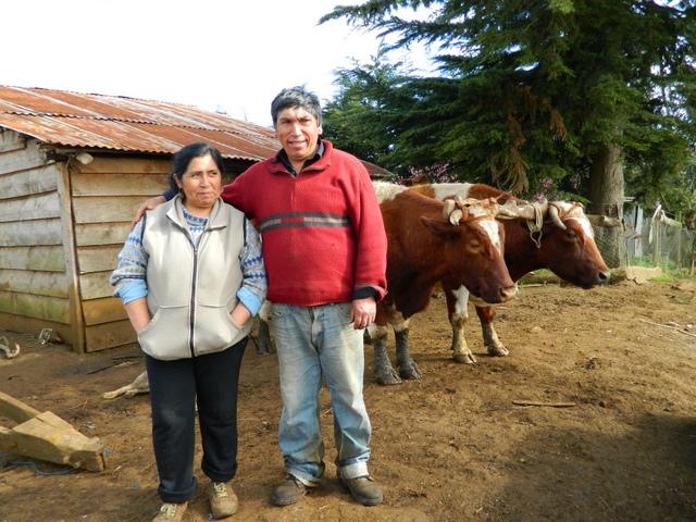 Los mapuches Luis Aillapán y su esposa Catalina Marileo fueron condenados por  una ley antiterrorista por reclamar la construcción de un camino en medio de sus tierras, lo que irrespetaba sus derechos de tenencia. Crédito: Marianela Jarroud/IPS