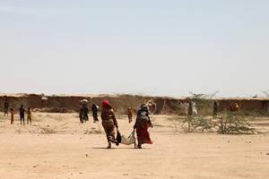 En Etiopía, los pastores venden sus animales para tener menos. Las consecuencias de El Niño los obligan a tener rebaños más pequeños. Crédito: FAO.