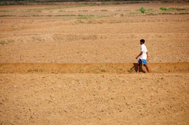 La tierra cuarteada se ha vuelto muy común en las zonas áridas de Sri Lanka. Crédito: Amantha Perera/IPS.