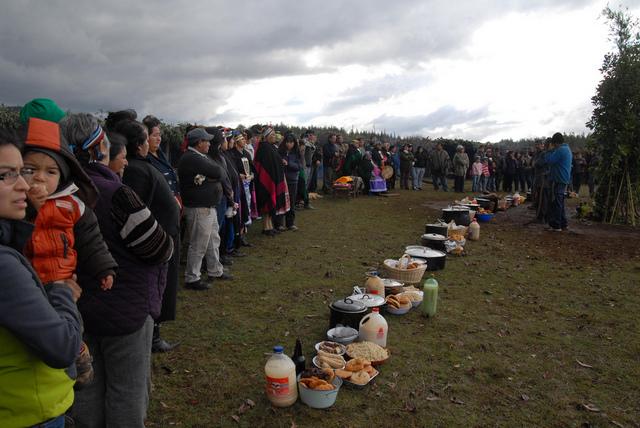 Una comunidad mapuche de la Araucanía, en el sur de Chile, reivindica sus derechos como pueblo originario, en especial la de la pertenencia colectiva de sus tierras ancestrales. Crédito: Fernando Fiedler/IPS