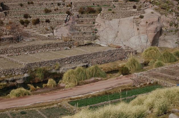 Algunas terrazas construidas por los indígenas atacameños en la aldea de Caspana, en la región de Antofagasta, en el norte de Chile. Esta técnica milenaria de cultivo representa una adaptación al clima y al árido suelo para garantizar la alimentación de los pueblos de altiplano andino. Crédito: Marianela Jarroud/IPS