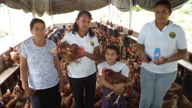 Integrantes de una pequeña cooperativa avícola en El Salvador, que genera ingresos para el grupo de mujeres que promovió la iniciativa y para sus familias. América Latina es el mayor exportador mundial de carne de ave. Crédito: Edgardo Ayala/IPS
