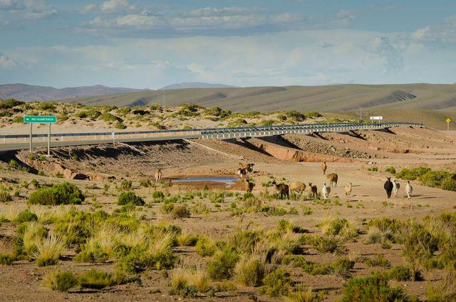 Un tramo de la carretera que integra el corredor Bolivia-Chile, destinado a incrementar los flujos comerciales y turísticos entre los dos países. Crédito: CAF