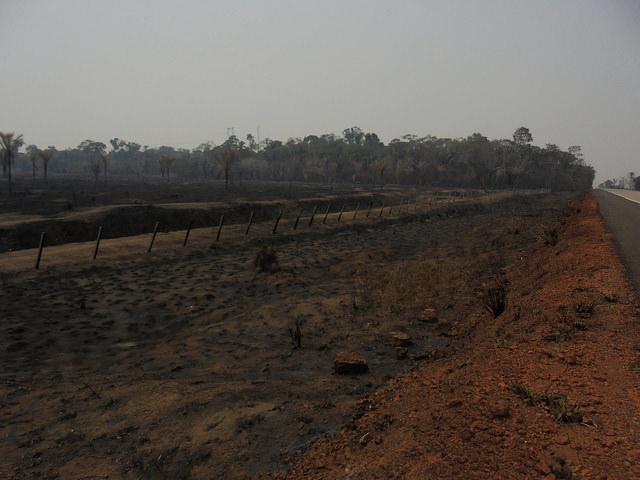 Un pastizal incendiado en el margen del tramo de la carretera BR 364 que lleva al norte de Bolivia y este de Perú desde el estado de Rondônia, en el noroccidente de Brasil. Las grandes quemas de tierras se redujeron en la Amazonia, pero persisten los incendios de pequeñas áreas. Crédito: Mario Osava/IPS