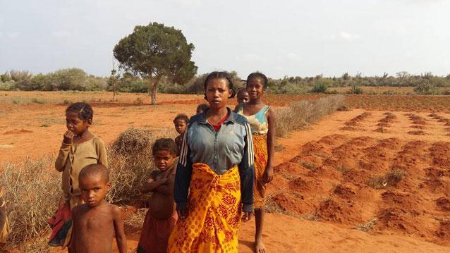El sur de Madagascar ha sido afectado por sequías consecutivas. Crédito: FAO