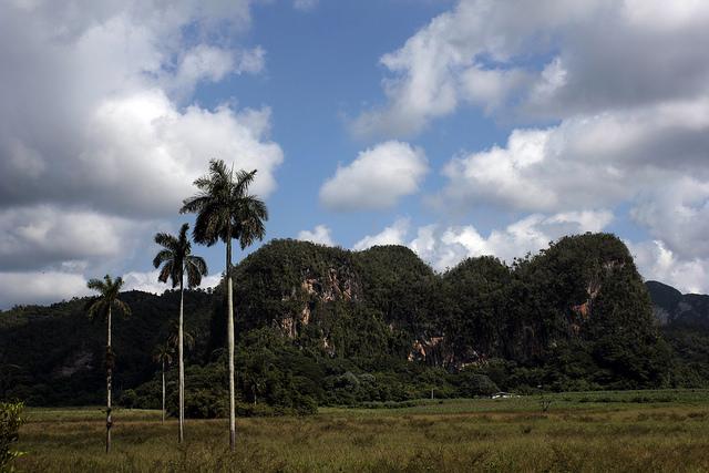 Paisaje del Valle de Viñales, un nuevo polo de atracción para el turismo internacional, en la occidental provincia de Pinar del Río, en Cuba. Crédito: Jorge Luis Baños/IPS